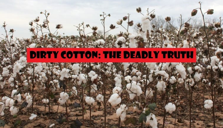 Cotton's Dirty Secret: The Shocking Reasons to Avoid Dirty Cotton and Choose Organic