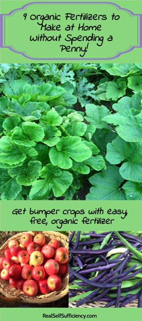 organic fertilizer recipe
