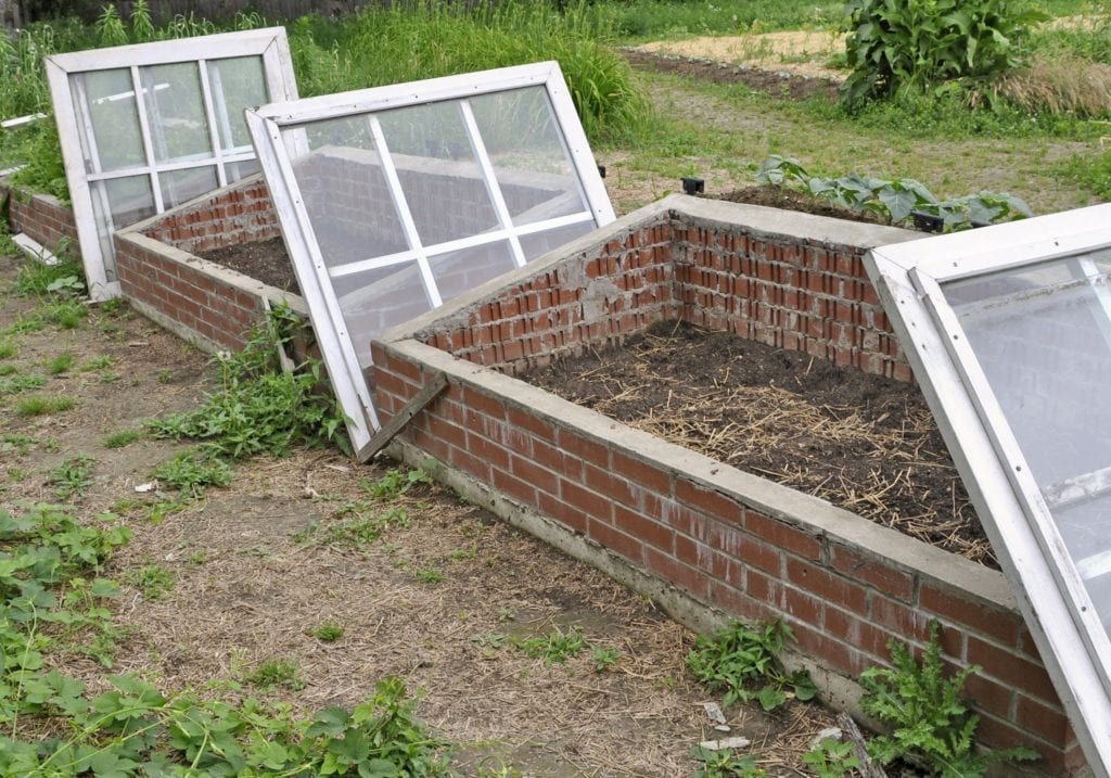 Fall garden task: prep and clean cold frames