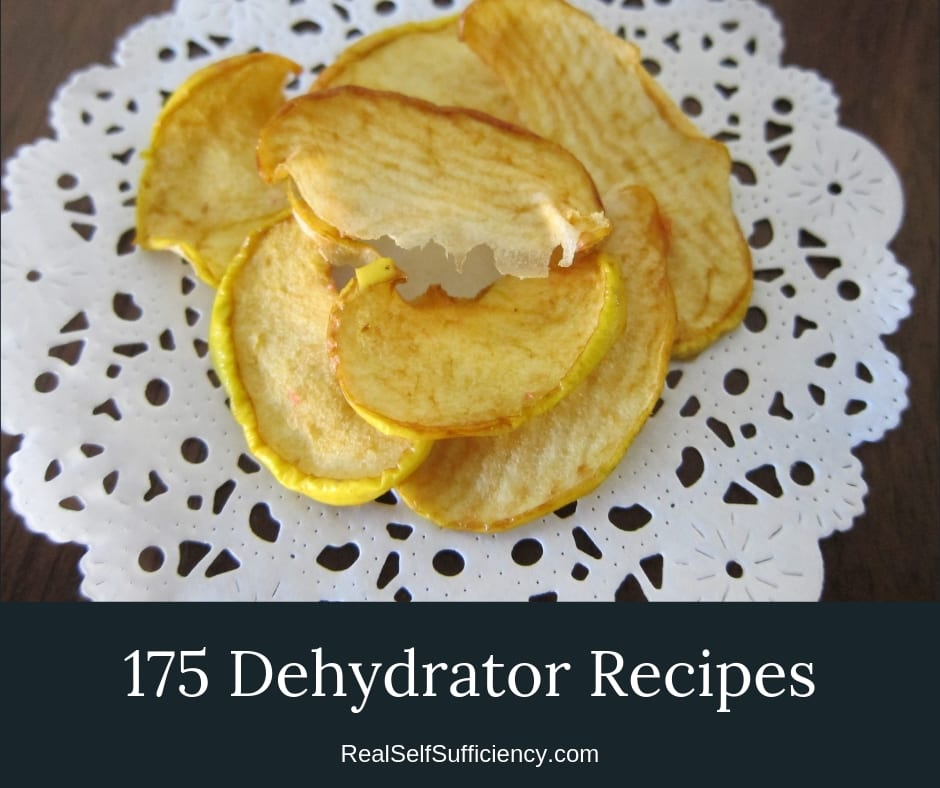 175 Dehydrator Recipies You'll love