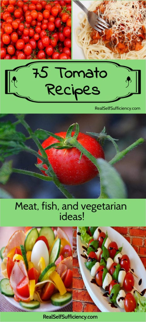 75 Tomato Recipes