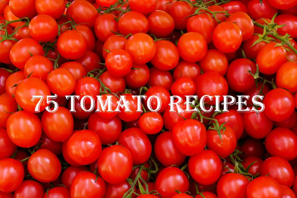 75 Tomato Recipes for Omnivores, Vegetarians, and Vegans, Too.