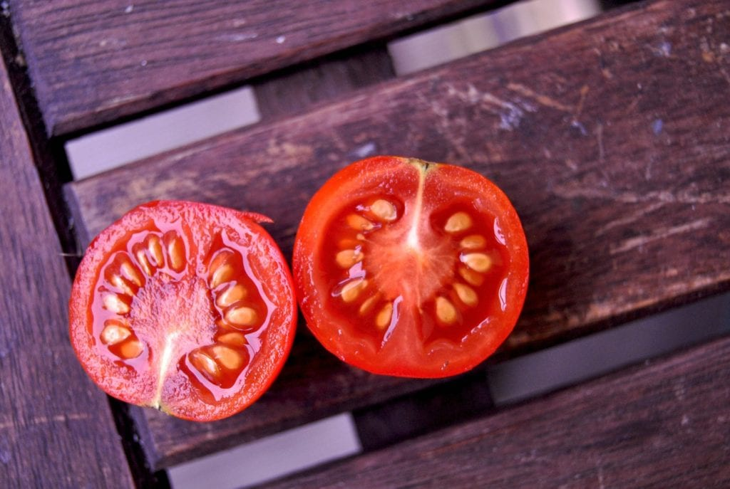 how to save tomato seeds