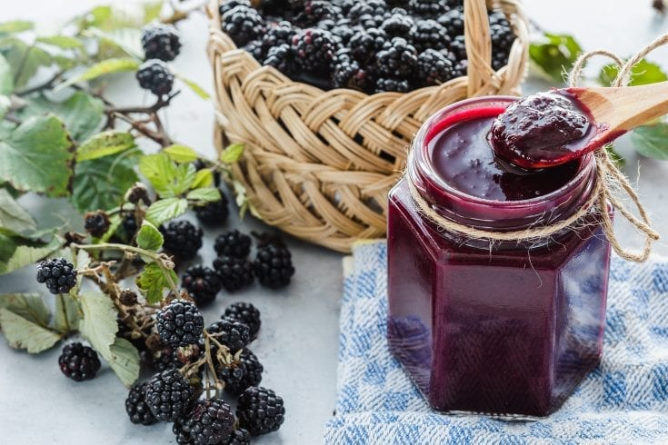 best blackberry jam recipe, easy, no sugar, no pectin