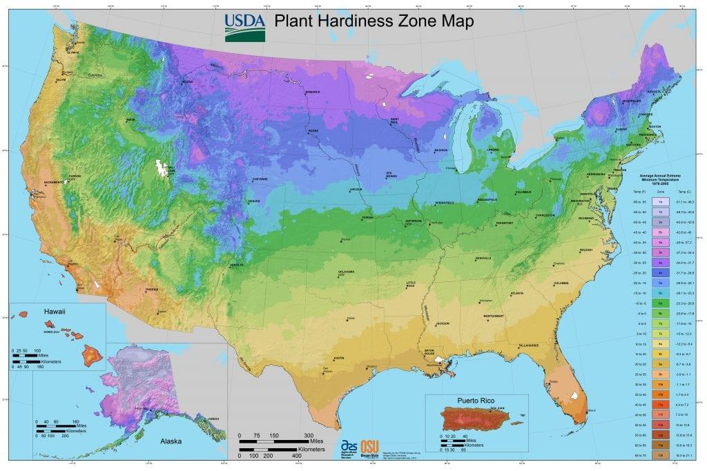 USDA hardines zone map